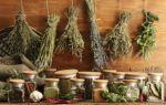 Лечение простатита травами у мужчин — какие растения помогают, как пить?