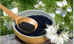 Черный тмин при беременности: польза и вред целебного растения