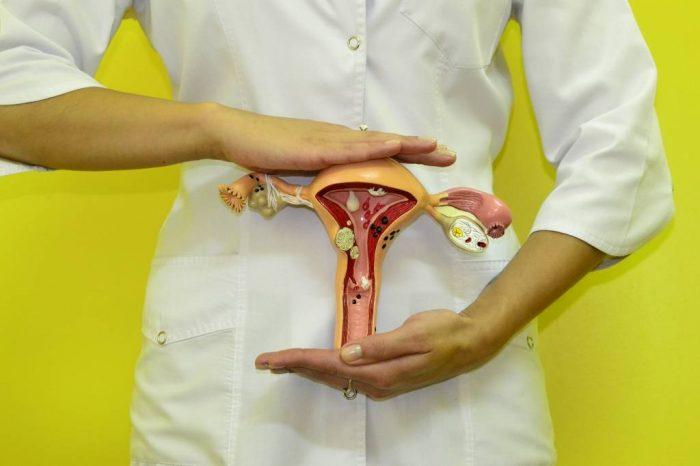 Цуг биопсия эндометрия