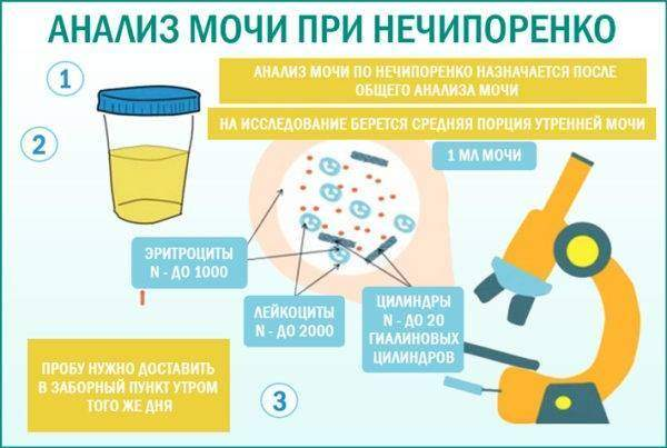 Нечипоренко моча по в применение прополиса настойка ухо