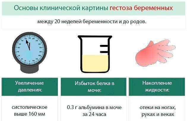 mocha-po-nechiporenko-norma-8.jpg