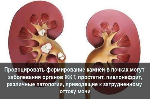 prov_kamn.jpg