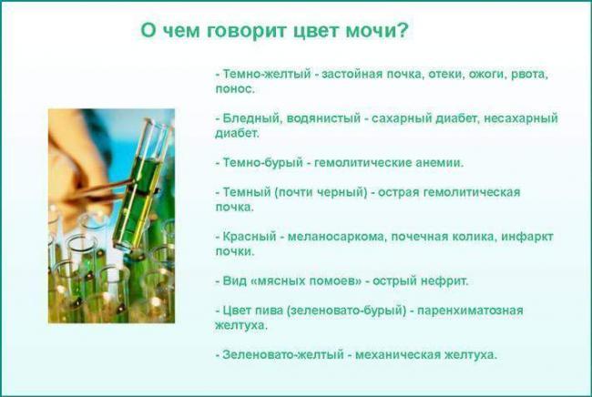prichiny-izmenenie-cveta-mochi-61.jpg