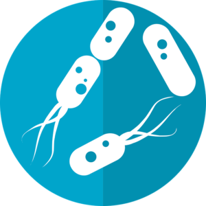 bacteria-icon-2316230_640-300x300.png